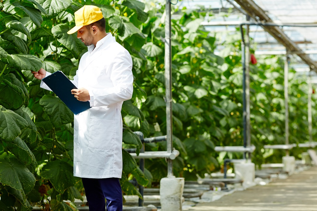 An agricultural engineer takes readings in a greenhouse farm.